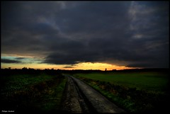 Chemiré le Gaudin (Sarthe) (gondardphilippe) Tags: chemirélegaudin sarthe maine paysdelaloire leverdesoleil aurore aube sun soleil campagne ciel sky nature rural route road clairobscur paysage landscape nuages clouds ngc