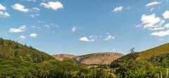 _DSC2884-286 (SteveKenilworth2014) Tags: wales llangollen mountains birds prey owl eagle kestrel long exposure clwyd denbishire dee river nikon d800e train hey farmland countryside