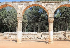 IMG_0406 (Nai.Sass) Tags: lebanon trave tyre sour anjar baalback ruins roman byzantine middle east temples summer vacation sea amateur
