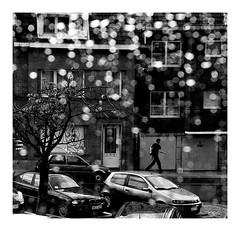 jour de pluie à Bruxelles (Marie Hacene) Tags: bruxelles belgique pluie noiretblanc fenêtre voiture gouttes