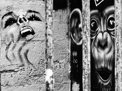 rv1 dvl P1320469 (oliv86) Tags: streetart graf bombe bordeaux artiste dessin peinture street art rue graffiti aerosol message