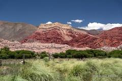 Purmamarca (Rolandito.) Tags: south america südamerika amérique du sud sudamérica argentina argentinien argentine landscape
