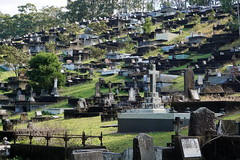 Toowong Cemetery (interestedbystandr) Tags: toowong toowongcemetery brisbane cemetery
