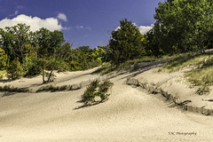 Indiana Dunes State Park - 2013 (TAC.Photography) Tags: dunes sand sandhill indiana statepark indianadunesstatepark landscape nature landscapephotography tomclarknet tacphotography