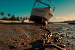 Boats... (hobbit68) Tags: boot boats himmel sky kette clouds wolken baum trees fujifilm xt2 spanien spain water wasser espana espagne espanol andalucia andalusien hafen port puerto ebbe holiday summer sommer urlaub atlantik sun sunshine sonne