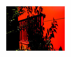 À chaud (hélène chantemerle) Tags: mur rouge ombre noir feuilles vert soleil chaleur wall red shadow black leaves green sun heat