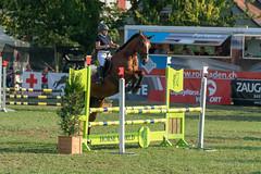 A9908545_s (AndiP66) Tags: springen langenthal 2018 5august2018 august pferd horse schweiz switzerland kantonbern cantonberne concours wettbewerb horsejumping equestrian sports springreiten pferdespringen pferdesport sport sony alpha sonyalpha 99markii 99ii 99m2 a99ii ilca99m2 slta99ii sony70400mm f456 sony70400mmf456gssmii sal70400g2 amount andreaspeters