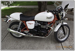 Motorcycles - Classics -  British - The Magnificent Triumph Thruxton - Special 2010 Edition. (Bill E2011) Tags: triumph british specialedition canon sporty classic style 1950s caferacer