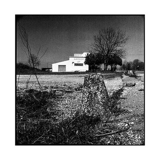 oasis • belair, burgundy • 2017