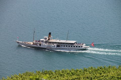 2018-07-17, CGN, Lac Léman, SS Montreux, St. Saphorin (Fototak) Tags: bateau vapeur dampfschiff montreux rivieravaudoise lavaux switzerland cgn