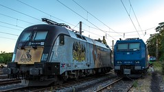 03_2018_08_05_Wanne-Eickel_Üwf_ES_64_U2_-_023_6182_523_DISPO_6185_529_ATLU_TXL (ruhrpott.sprinter) Tags: ruhrpott sprinter deutschland germany allmangne nrw ruhrgebiet gelsenkirchen lokomotive locomotives eisenbahn railroad rail zug train reisezug passenger güter cargo freight fret herne wanne eickel wanneeickel üwf atlu vectron siemens 6182 6185 6193 es 64 u2 es64u2 mrcedispo mrcedispolok mrce dispo stellwerk stellwerküwf txl txlogistik kaiser franz outdoor logo natur werbung