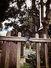 St John's Church (Sibby Thom) Tags: church knottyash liverpool uk merseyside trees stjohnchurch sirkendodd