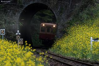 小湊鐵道.月崎