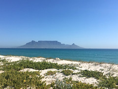 From the dunes (rjmiller1807) Tags: blouberg bloubergstrand capetown westerncape southafrica 2017 iphone iphonography iphonese dune dunes ocean sea tablebay tablemountain mountain atlanticocean water sand beach sky blue sandy