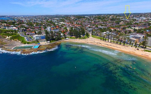 7/36 Pacific Pde, Dee Why NSW 2099