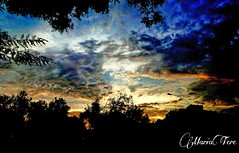 Atardecer en Parque Los Olivos (Lima-Perú) (MariaTere-7) Tags: nubes parquedelosolivos colores lima perú maríatere7 atardecer nwn