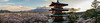 DionChapman-00902 (puggsincyberspace) Tags: mtfuji japan mountfuji snow sony sonya7rii sonya7r2 cherryblossom blossom