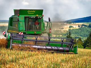 Harvest home I