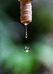 STORY OF WATER COMES WITH A TWIST. (GOPAN G. NAIR [ GOPS Photography ]) Tags: gopsorg gopangnair gops gopsphotography gopan photography frozen moment water drop droplet tap action freeze high speed