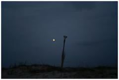 Vadu 02 (misu_1975) Tags: blue bluehour magichour clouds rangefinder digital leica leicam leicamp 240 summicron summicronm 50mm f2 vadu vadupescarilor