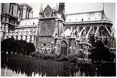 Notre Dame 1 (ekeha) Tags: 2weltkrieg notredame