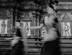Chidambaram Natyanjali | 2018. (Vijayaraj PS) Tags: incredibleindia indianwoman indianheritage india asia femaleartist artist dance art eventphotography mychennai chennai black classical longexposure indoor slowshutterspeed manipuriartists 2018