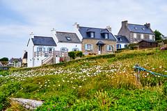 Carte Postale de Bretagne (yoannpupat) Tags: îledebatz landscape paysage sony a7r 50mm loxia bretagne