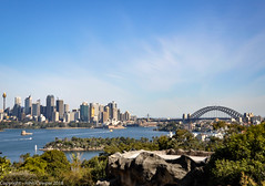 A Day at the Zoo - But first the view! (1) (john cowper) Tags: sydney tarongazoologicalpark zoo animals birds seals schoolholidays mosman sydneyharbour touristattraction