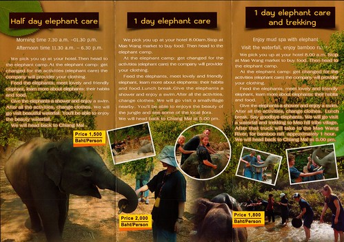 Elephant Family Care Chiang Mai Thailand 2