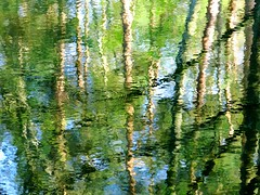 broadening (vertblu) Tags: mirroring mirrored mirroredlandscape reflection reflections reflectedtrees reflectedskies reflectedlight reflectedtwigs circles broadening abstract abstraction abstrakt abstractreflections green blue white ripples rippling distorted distortion vertblu water waterabstract watersurface stream streamsurface örtzestream natureabstracted abstractnature