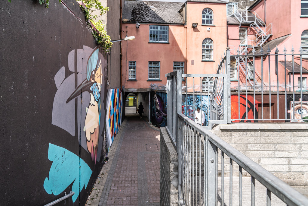 EXAMPLES OF STREET ART [URBAN CULTURE IN WATERFORD CITY]-142295