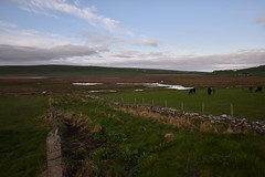 RSPB The Loons (PLawston) Tags: uk britain scotland orkney mainland rspb loons wetland nature reserve