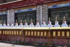 Scene along the Tashi Dor kora, Lake Namtso, Tibet (31) (Prof. Mortel) Tags: tibet lake namtso