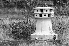 Torque Post (RagbagPhotography) Tags: kirkcaldy fife lang toun langtoun harbour esplanade mono monochrome blackandwhite black white