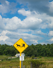 amish-0832 (FarFlungTravels) Tags: holmescounty amish country rural horse buggy bicycle farm tour lavonnedebois