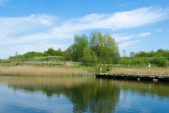 Brockhole Nature Reserve , Preston , Lancashire - May 2018 (I.T.P.) Tags: brockhole nature reserve preston lancashire