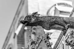 Gargoyle at Laon Church, France (4544) (Lundy Photos) Tags: laon nordpasdecalaispicardie france fr