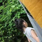 chiangmai-set3- (171) thumbnail
