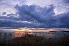 Atardecer con Nubes (Peideluo) Tags: nature naturaleza paisaje waterscape parquesnacionales clouds sky cloudscape water cielo hierba