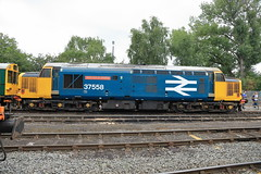 37558 'Avro Vulcan XH558' (aledy66) Tags: drsopenday2018grestybridge crewe 37558 avro vulcan xh558 ef24105mm diesel freight train engine loco locomotive canon eos 6d 6d2 markii mk2 mkii railway railroad track rail
