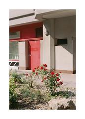 (Dennis Schnieber) Tags: 35mm kleinbild analog color film kodak portra 400 fujica st801 fujinon ebc 50 14 graz austria