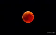 Moon eclipse, July 27th, 2018, Mont Blanc, France (Flox Papa) Tags: mont blanc mooneclipse 2018 montblanc france moon eclipse july canon 1d mark iv 4 24 105 l f4l f28l 70 200 ii 70200 ef24105mm ef70200mm 27th 27 th florent péraudeau flox papa