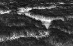 Night Work (arbyreed) Tags: arbyreed fantasy fanciful water beavermeadow beaverdam infrared 665nanometerinfrared inverted toneinvertedinfrared saltcreek giraffecreek grass dam lincolncountywyoming night glow monochrome bw blackandwhite explore