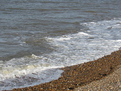 IMG_9643 (griffpops_deptford) Tags: whitstable reculver oysters seaside sea beach