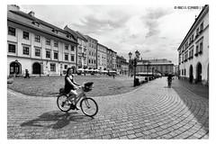 "Biking <a style=""margin-left:10px; font-size:0.8em;"" href=""http://www.flickr.com/photos/66444177@N04/43709303481/"" target=""_blank"">@flickr</a>"