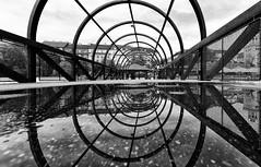 like a mirror (Leipzig_trifft_Wien) Tags: prag hlavníměstopraha tschechien cz mirror reflection puddle structure steel geometry line circle black white bnw blackandwhite