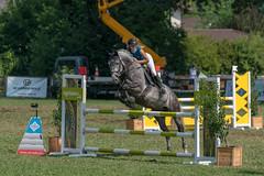 A9909006_s (AndiP66) Tags: springen langenthal 2018 5august2018 august pferd horse schweiz switzerland kantonbern cantonberne concours wettbewerb horsejumping equestrian sports springreiten pferdespringen pferdesport sport sony alpha sonyalpha 99markii 99ii 99m2 a99ii ilca99m2 slta99ii sony70400mm f456 sony70400mmf456gssmii sal70400g2 amount andreaspeters