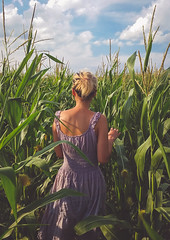 "Cornfield Dream - alt. ""Fields of Gold"" (Irrational Photography) Tags: girl woman asian beautiful beauty sexy hot adorable black blonde hair face cloth sock socks stockings stocking dress light eyes vietnamese vietnam skin glasses cute photo picture white sky cloud photography saint tree leaf leaves android shooter samsung s5 active phone cellphone valencia instagram field corn champ champs blé dinde inde mais maïs shadow contrast dark mood atmosphere soft fade curve retro vintage antique hipster clouds blue orange"