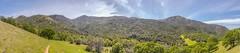 Mount Diablo from Donner Creek Trail (www78) Tags: california clayton mountdiablo statepark mount diablo from donner creek trail
