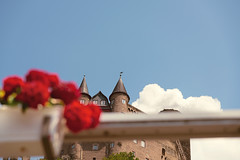 Burg und Blumen (pni) Tags: cloud burgkatz castle neukatzenelnbogen katzenelnbogen sky flower blur building rail altstadt stgoarshausen ger18 germany deutschland pekkanikrus skrubu pni